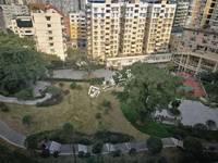 出租其他小区 新华路 3室2厅1卫100平米1100元/月住宅